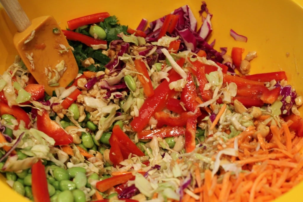Asian Cole Slaw with Ginger Peanut Dressing - No Thanks to Cake