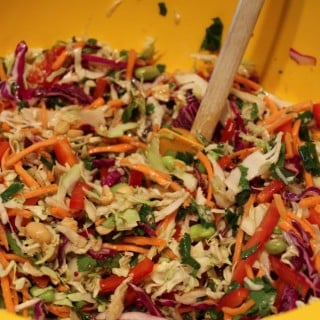 Asian Cole Slaw with Ginger Peanut Dressing