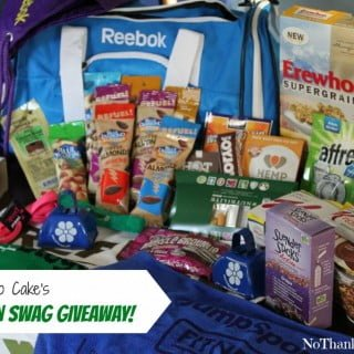 Fitbloggin Swag Giveaway | No Thanks to Cake