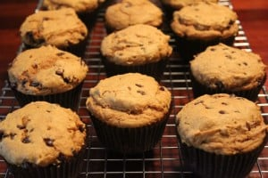Pumpkin Spice Chocolate Chip Muffins | No Thanks to Cake