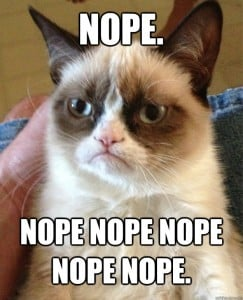Nope Grumpy Cat | No Thanks to Cake