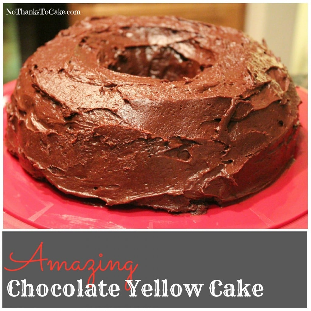 Amazing Chocolate Yellow Cake | No Thanks to Cake