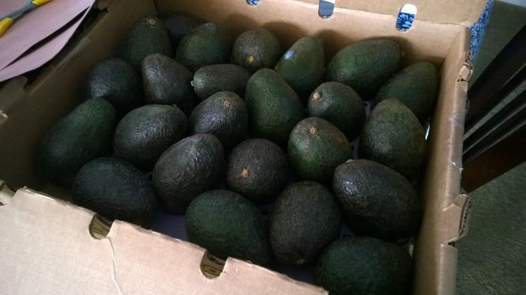 California Avocados | No Thanks to Cake