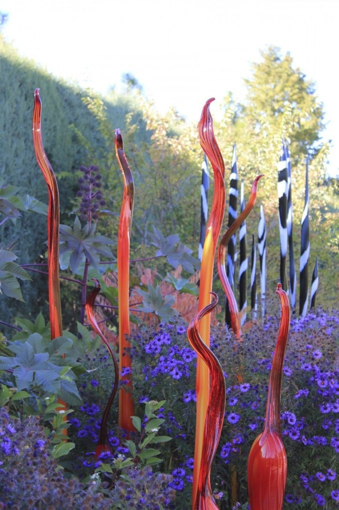 Chihuly at Denver Botanic Gardens | No Thanks to Cake