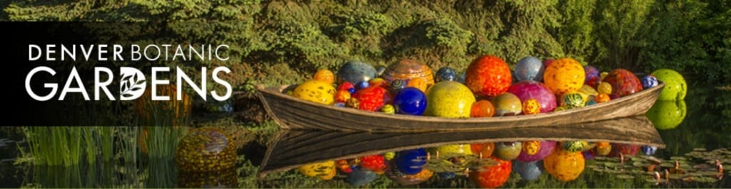Chihuly at the Denver Botanic Gardens | No Thanks to Cake