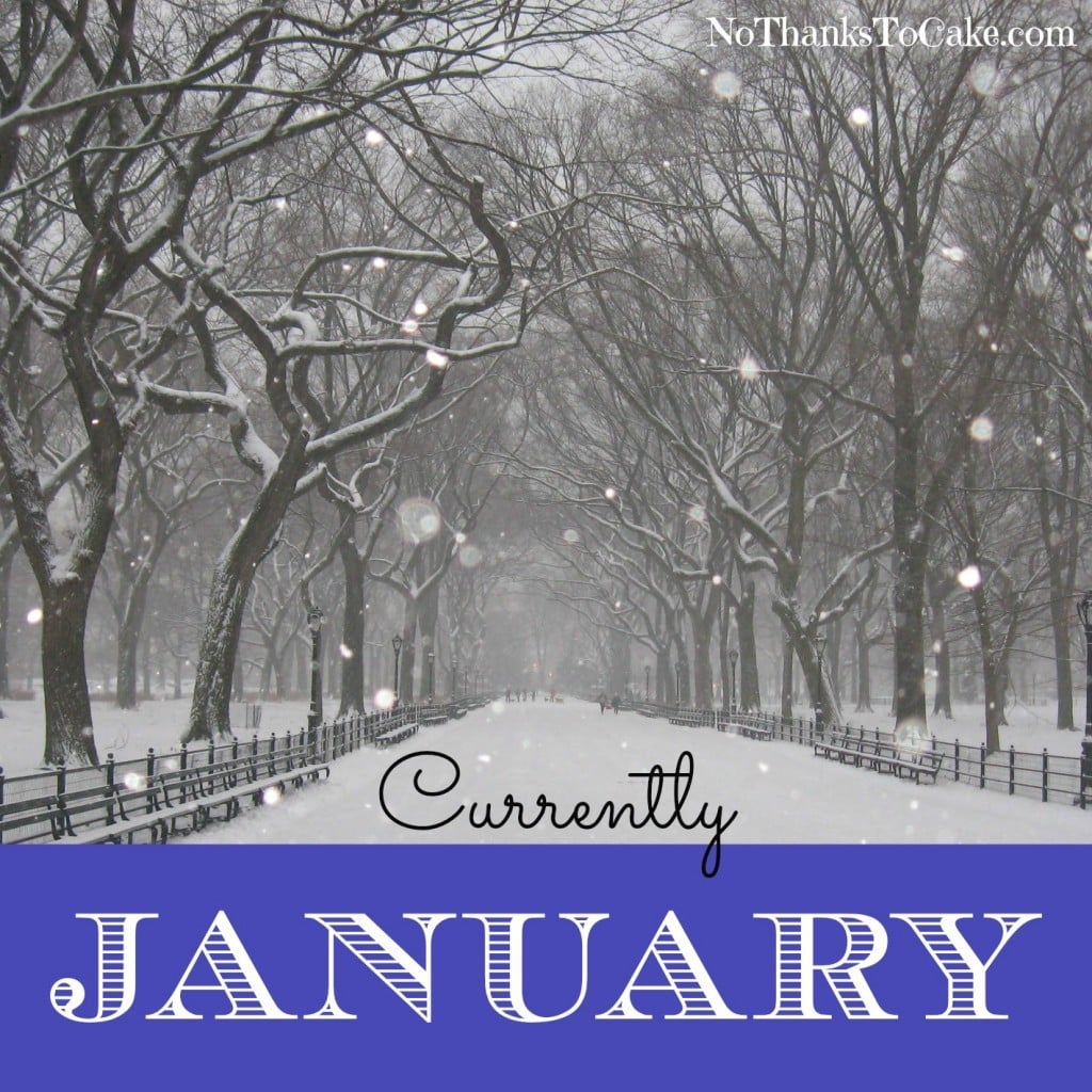 Currently January | No Thanks to Cake