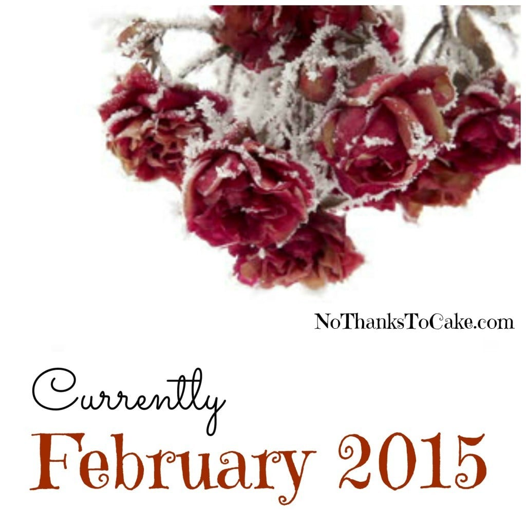 Currently February 2015 | No Thanks to Cake