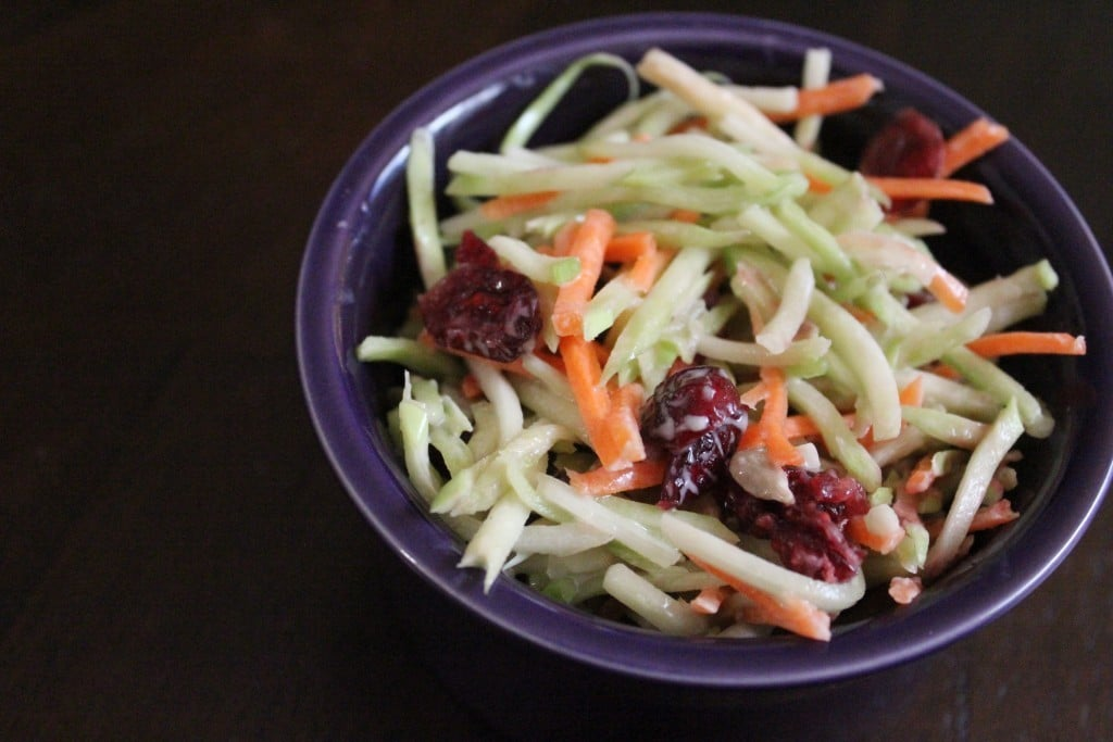 Cranberry Broccoli Slaw | No Thanks to Cake