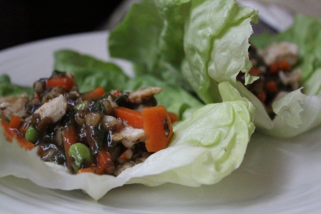Jenny Craig Asian Lettuce Wraps | No Thanks to Cake