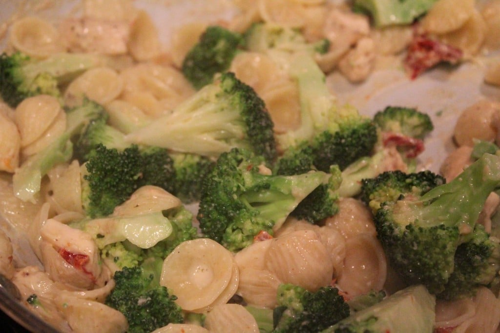 Lightened Up Broccoli Chicken Macaroni and Cheese | No Thanks to Cake