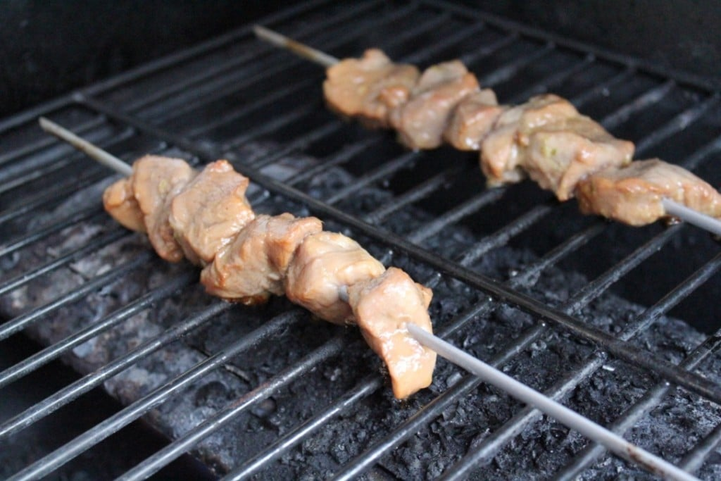 Pork Kabobs with Soy Ginger Marinade | No Thanks to Cake