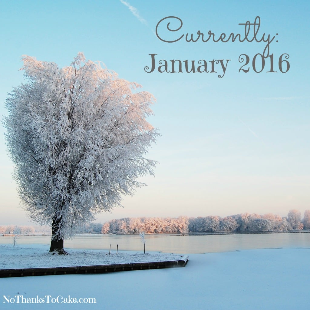 Currently January 2016 | No Thanks to Cake