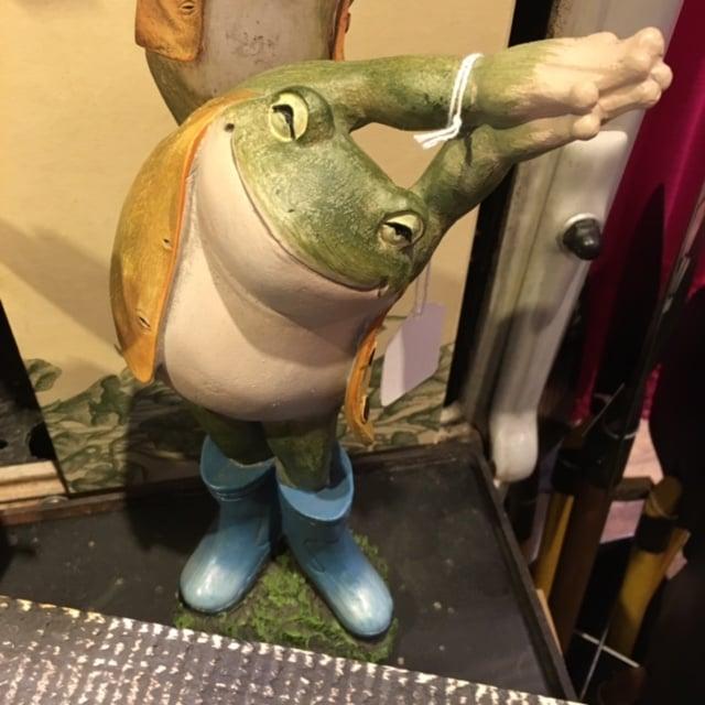 Yoga Frog | No Thanks to Cake