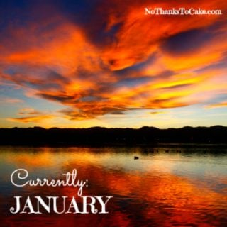 Currently January 2017 | No Thanks to Cake